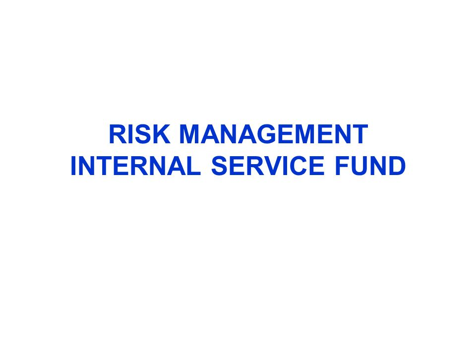 RISK MANAGEMENT INTERNAL SERVICE FUND