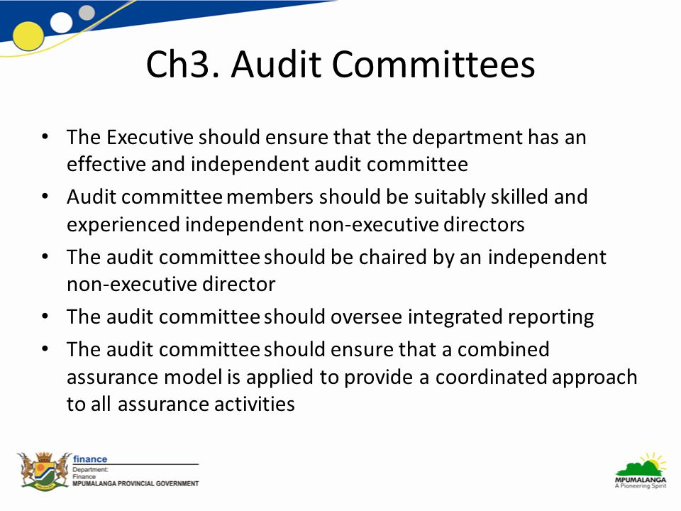 Ch3. Audit Committees The Executive should ensure that the department has an effective and independent audit committee Audit committee members should