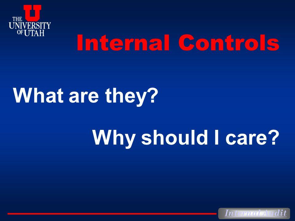 Internal Audit What is Internal Control.