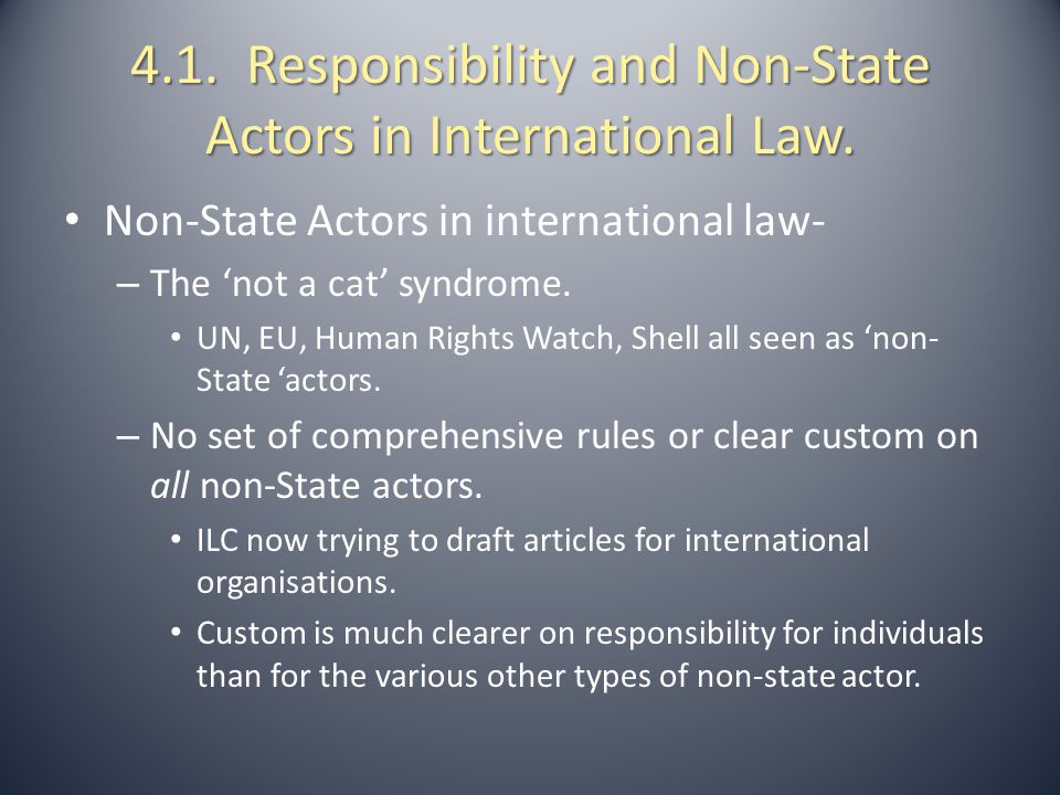 4.2.1.Individual and State Responsibility under International Law.