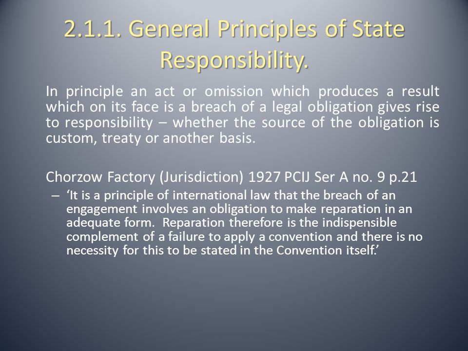2.1.2.General Principles of State Responsibility.
