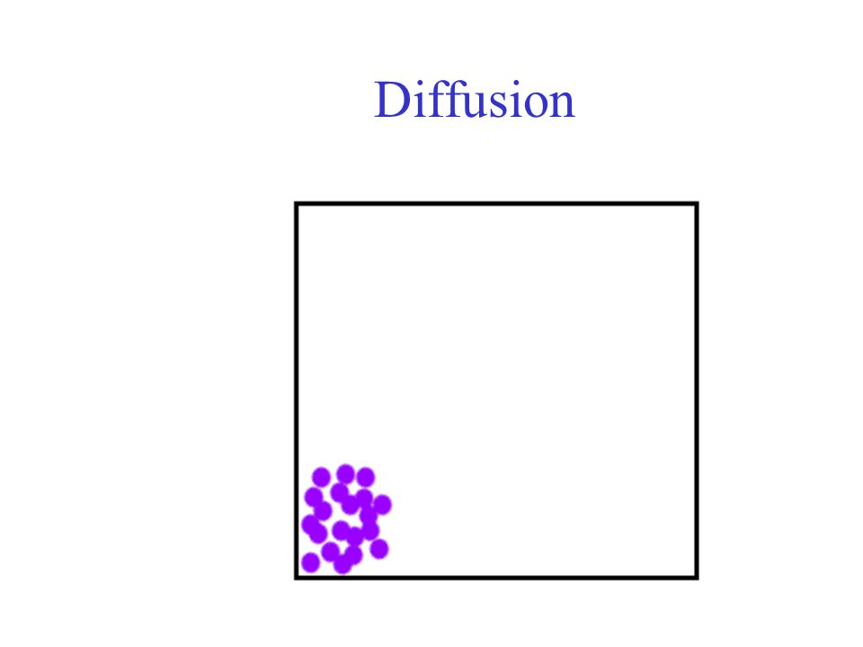 Diffusion Movement of molecules from an area of high concentration to an area of lower concentration Continues until equilibrium is reached.