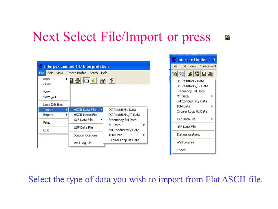 Next Select File/Import or press Select the type of data you wish to import from Flat ASCII file.