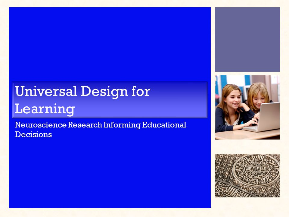 Universal Design for Learning Neuroscience Research Informing Educational Decisions