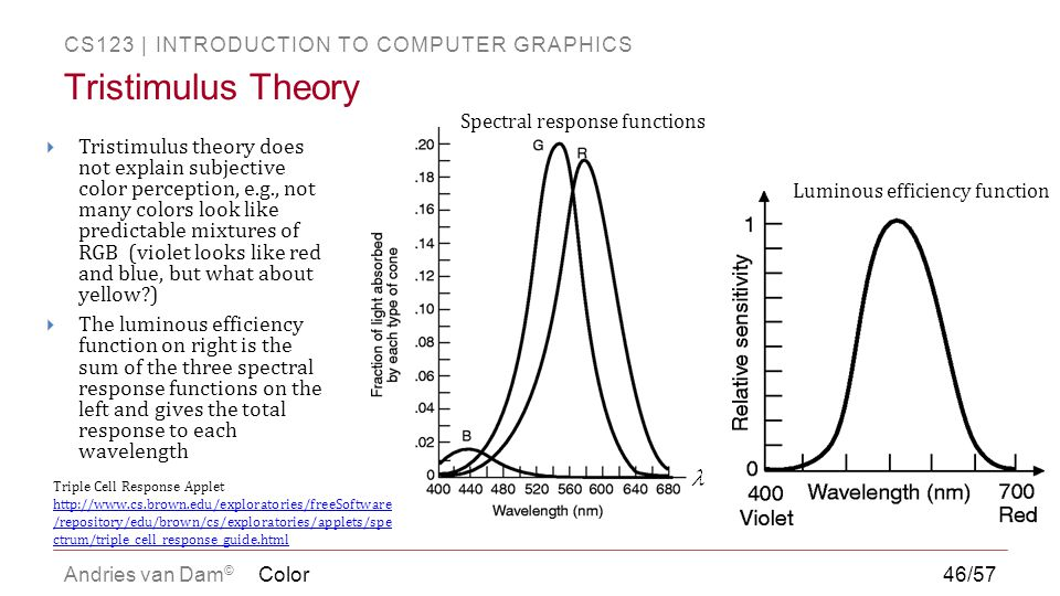 CS123 | INTRODUCTION TO COMPUTER GRAPHICS Andries van Dam ©  Tristimulus theory does not explain subjective color perception, e.g., not many colors l