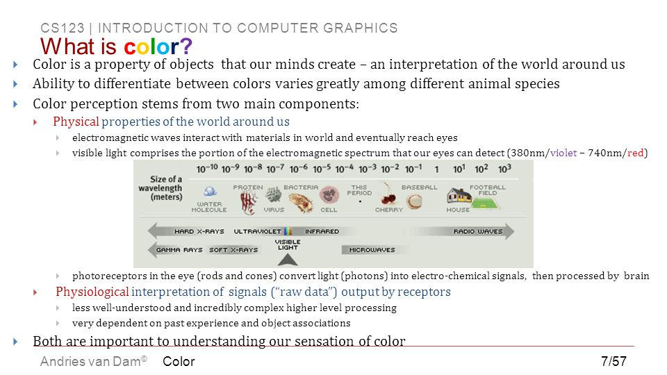 CS123 | INTRODUCTION TO COMPUTER GRAPHICS Andries van Dam ©  Still not completely understood  New tools (e.g., fMRI) greatly increase our understanding, but also introduce new questions  Some viewing capabilities are hardwired, others are learned  We acquire a visual vocabulary  What looked real on the screen a few years ago no longer does – bar keeps rising  We have huge innate pattern recognition ability  Visual processing generally faster than higher-level cognitive processing  Roads use symbols instead of words for signs (but dual coding is always better)  May have more emotional impact Color8/57 Our Visual System Constructs our Reality (1/3)