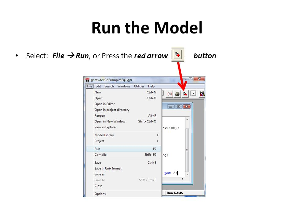 Select: File  Run, or Press the red arrow button Run the Model