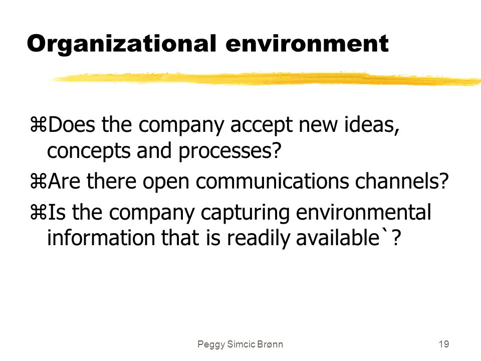 Peggy Simcic Brønn19 Organizational environment zDoes the company accept new ideas, concepts and processes.