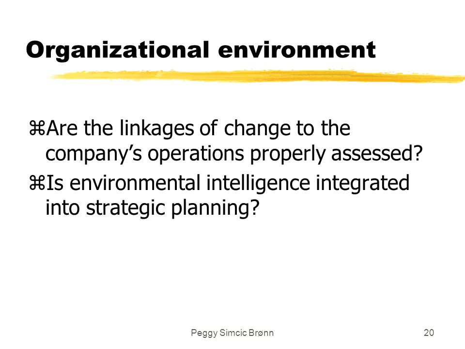 Peggy Simcic Brønn20 Organizational environment zAre the linkages of change to the company's operations properly assessed.