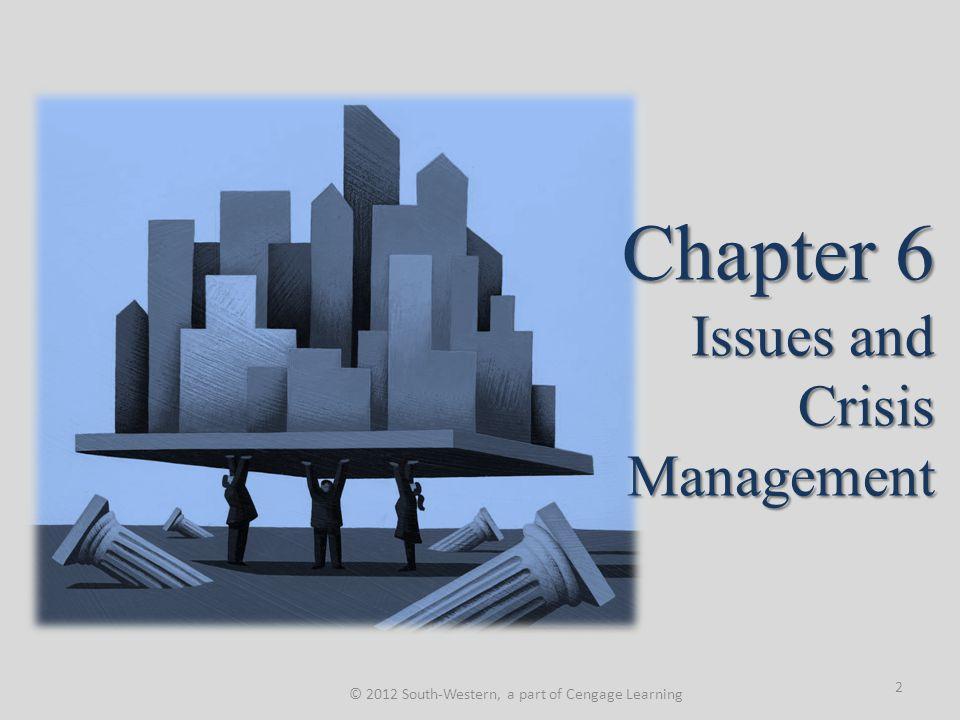 Issues Development Process The growth process or life cycle of an issue.