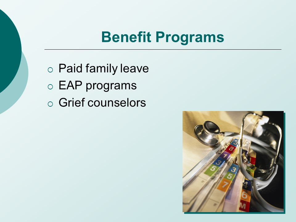 Benefit Programs  Paid family leave  EAP programs  Grief counselors