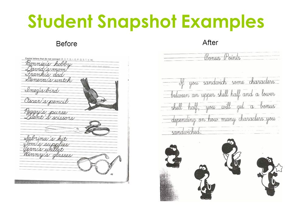 Student Snapshot Examples Before After