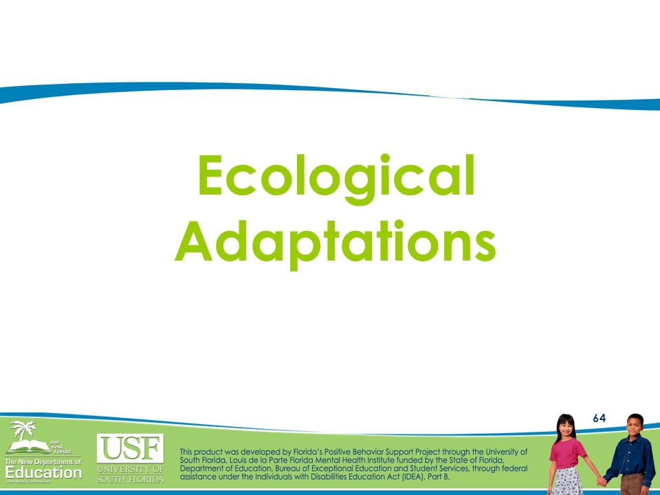 64 Ecological Adaptations