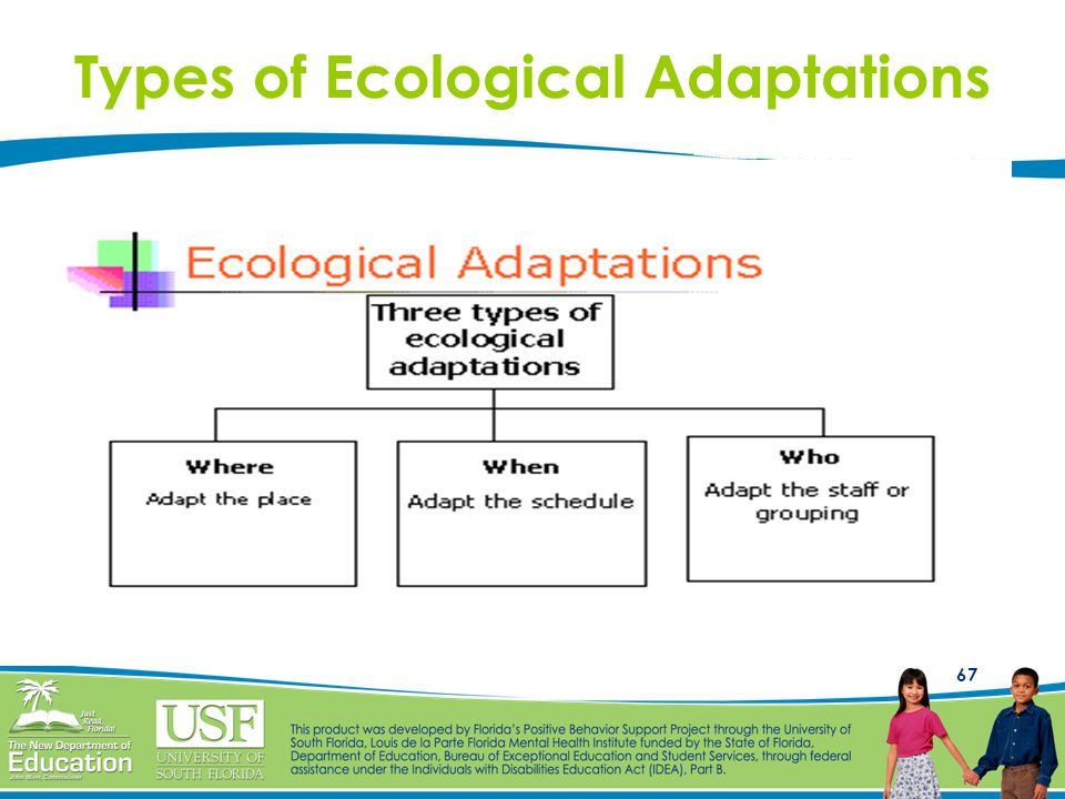 67 Types of Ecological Adaptations
