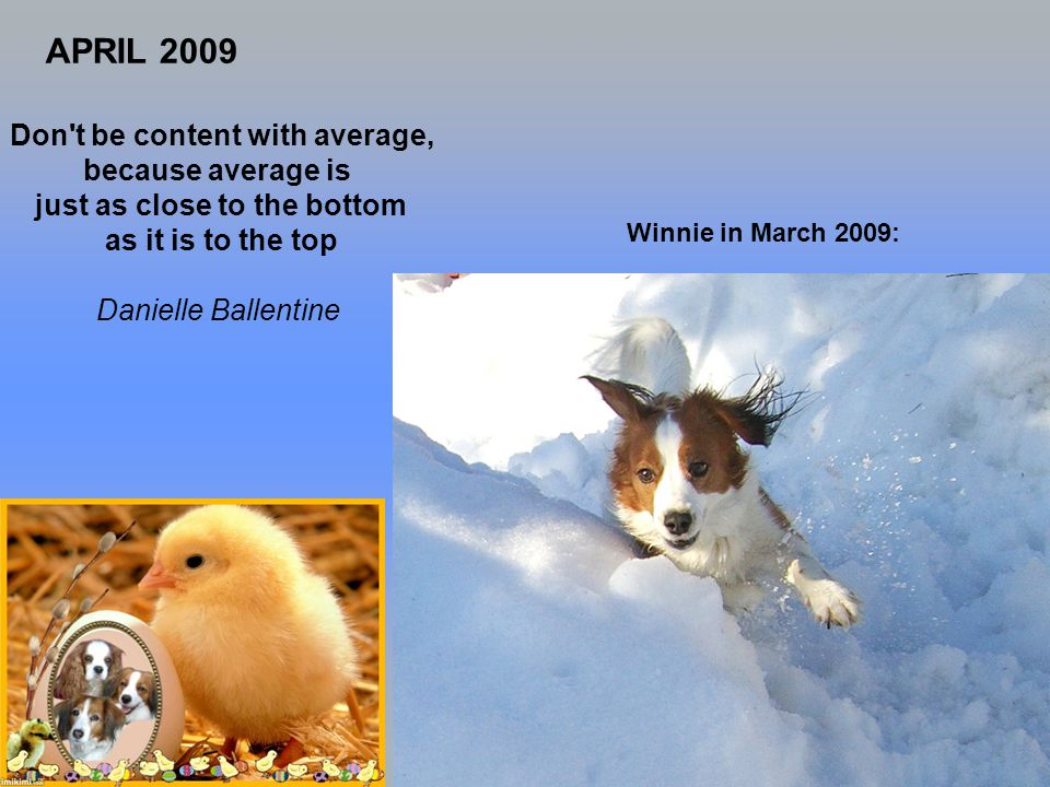 Don t be content with average, because average is just as close to the bottom as it is to the top Danielle Ballentine APRIL 2009 Winnie in March 2009: