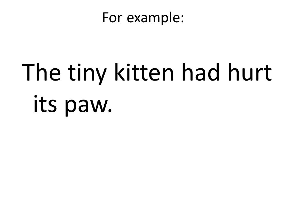 For example: The tiny kitten had hurt its paw.