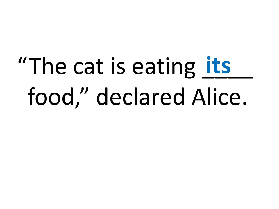 The cat is eating ____ food, declared Alice. its