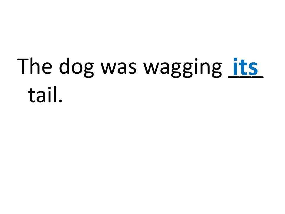 The dog was wagging ___ tail. its