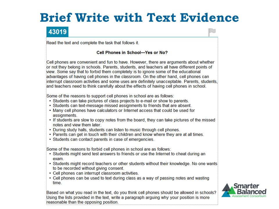 Brief Write with Text Evidence