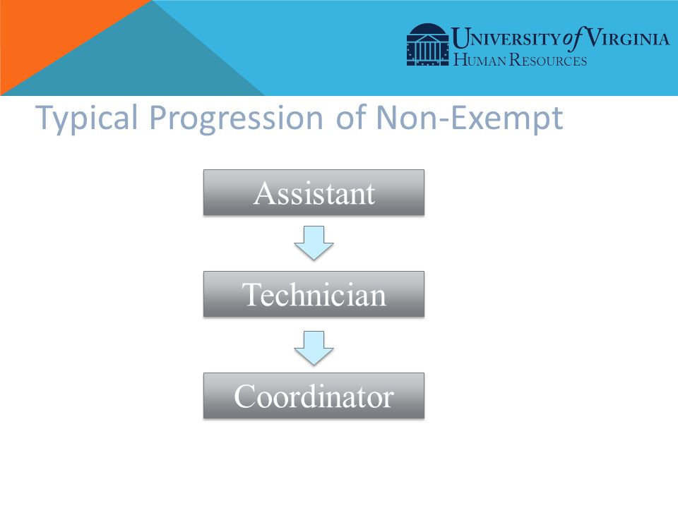 Typical Progression of Non-Exempt Assistant Technician Coordinator