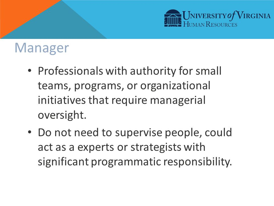 Manager Professionals with authority for small teams, programs, or organizational initiatives that require managerial oversight.