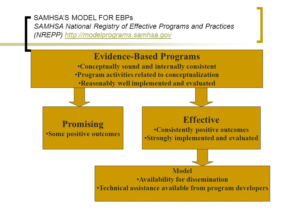 Evidence-Based Programs Conceptually sound and internally consistent Program activities related to conceptualization Reasonably well implemented and e