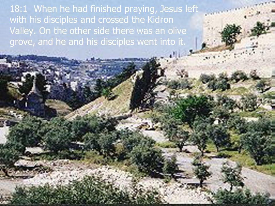  G.K. Pennington 2002 100 18:1 When he had finished praying, Jesus left with his disciples and crossed the Kidron Valley. On the other side there was