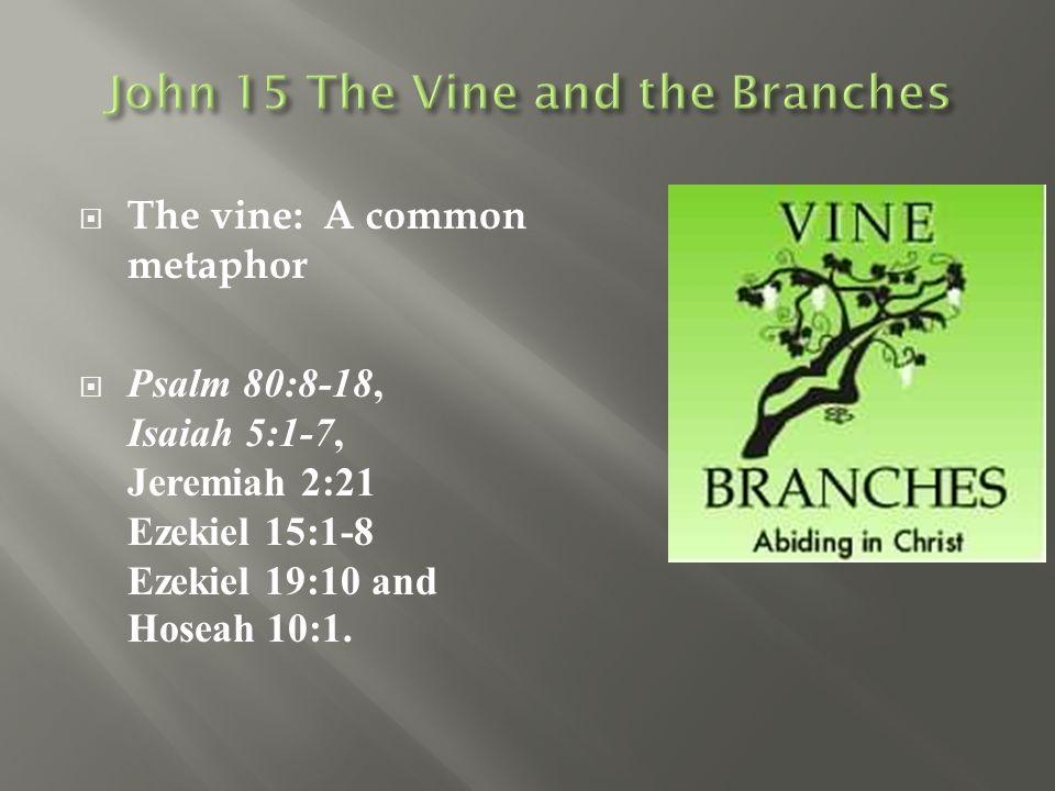  The vine: A common metaphor  Psalm 80:8-18, Isaiah 5:1-7, Jeremiah 2:21 Ezekiel 15:1-8 Ezekiel 19:10 and Hoseah 10:1.