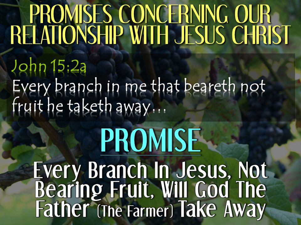 PROMISES CONCERNING OUR RELATIONSHIP WITH JESUS CHRIST