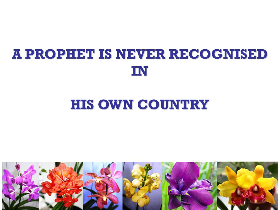 A PROPHET IS NEVER RECOGNISED IN HIS OWN COUNTRY