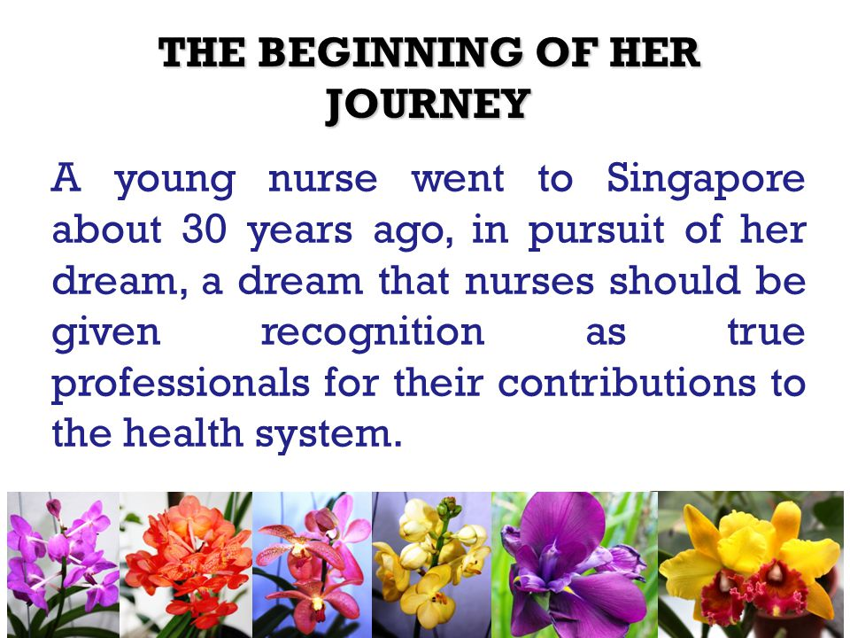 THE BEGINNING OF HER JOURNEY A young nurse went to Singapore about 30 years ago, in pursuit of her dream, a dream that nurses should be given recognition as true professionals for their contributions to the health system.