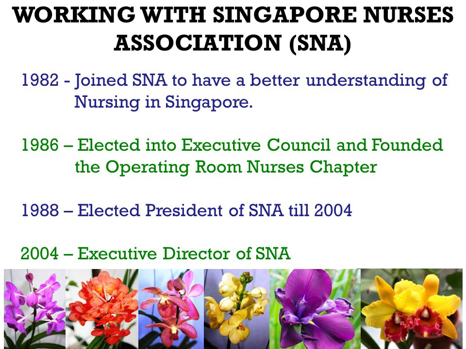 1982 - Joined SNA to have a better understanding of Nursing in Singapore.