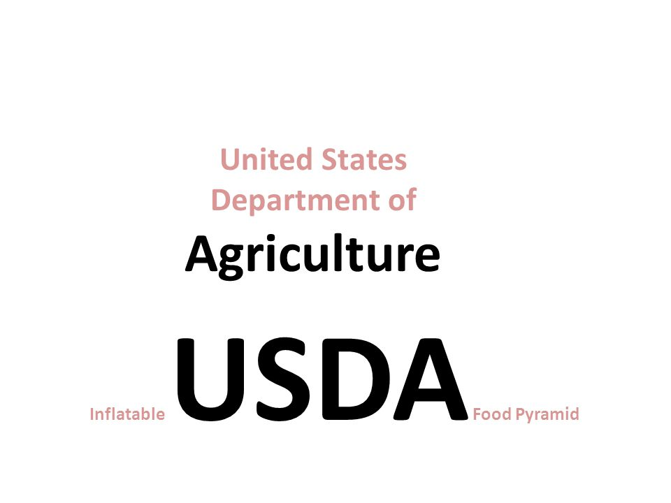 Inflatable USDA Food Pyramid http://www.ethnicfoodsco.com/Japan/JapaneseFoodPyramid.htm United States Department of Agriculture