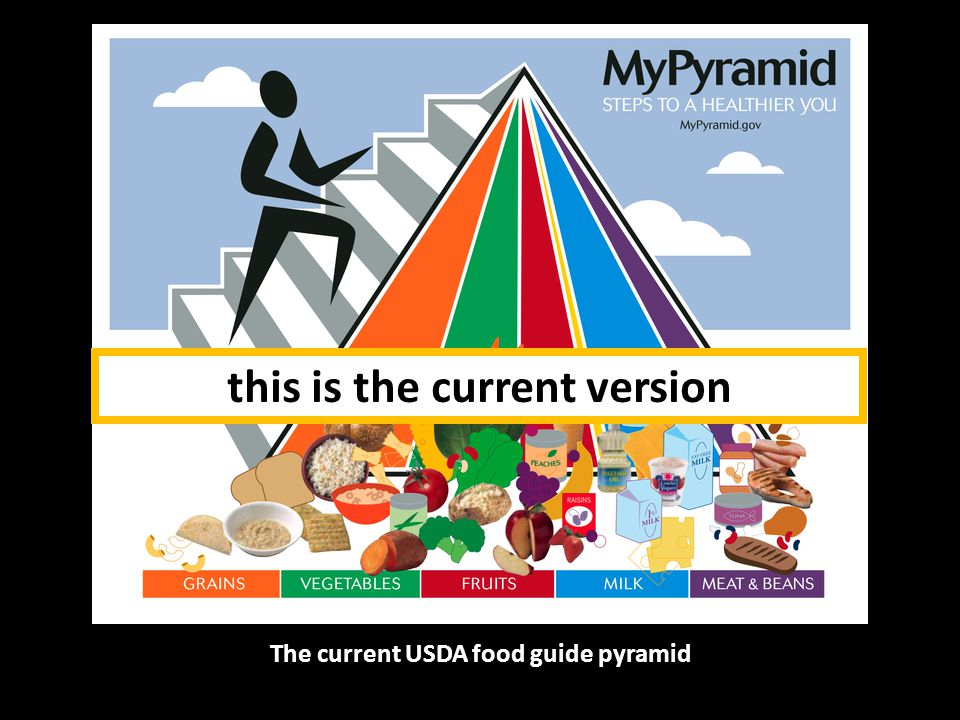 The current USDA food guide pyramid see the Food Guide slide set or more information