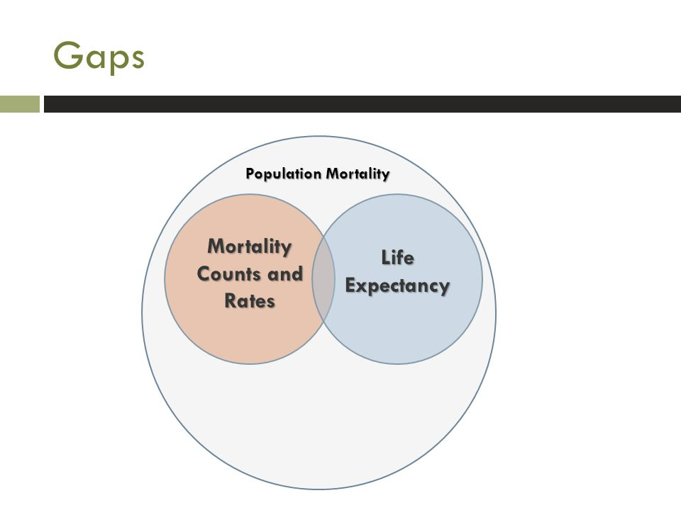 Gaps Mortality Counts and Rates Life Expectancy Population Mortality