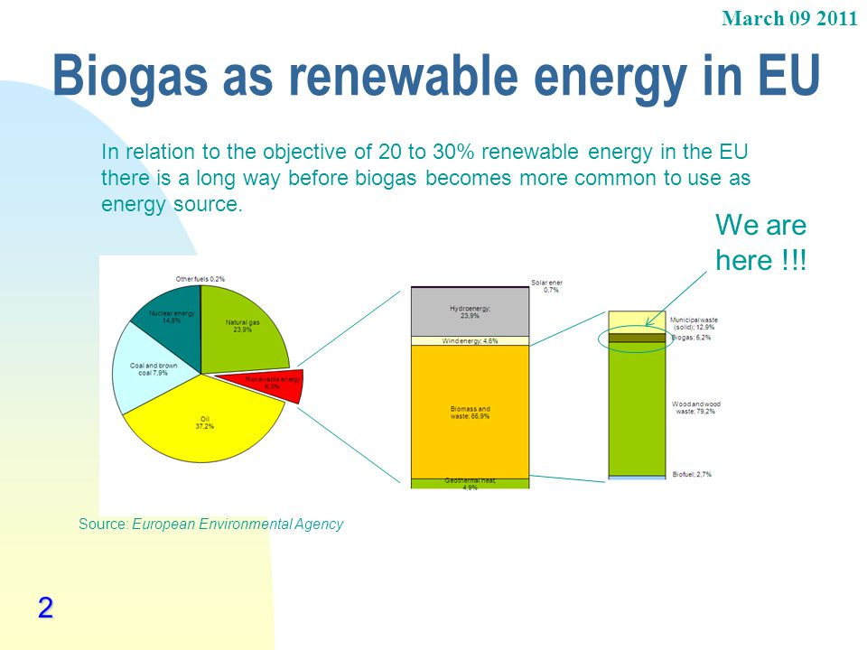 March 09 2011 In relation to the objective of 20 to 30% renewable energy in the EU there is a long way before biogas becomes more common to use as ene