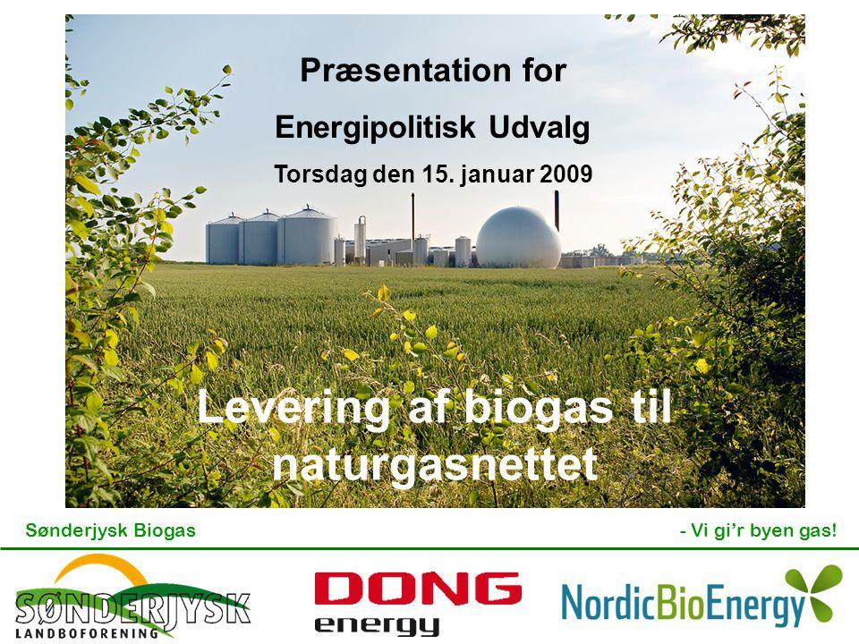 Sønderjysk Biogas- Vi gi'r byen gas! Præsentation for Energipolitisk Udvalg Torsdag den 15. januar 2009 Levering af biogas til naturgasnettet