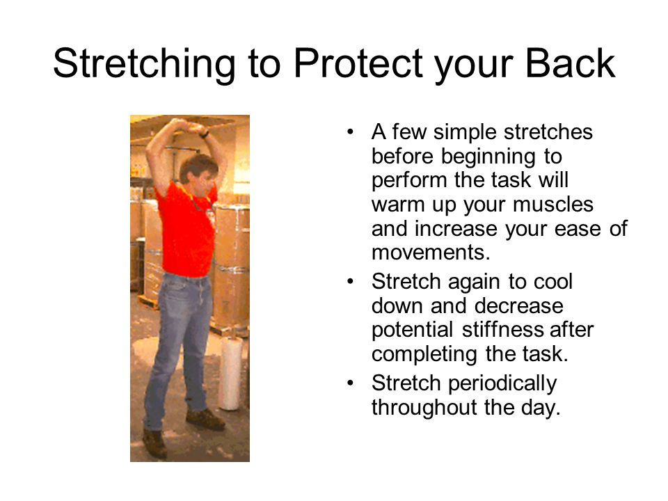Stretching to Protect your Back A few simple stretches before beginning to perform the task will warm up your muscles and increase your ease of moveme