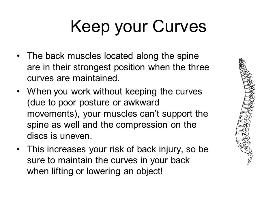 Keep your Curves The back muscles located along the spine are in their strongest position when the three curves are maintained. When you work without