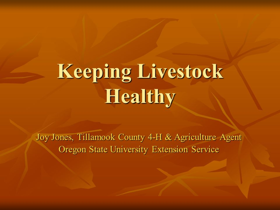 2-18-2008 Keeping Livestock Healthy Prepare for your animal before you get one Prepare for your animal before you get one Learn about the animal.