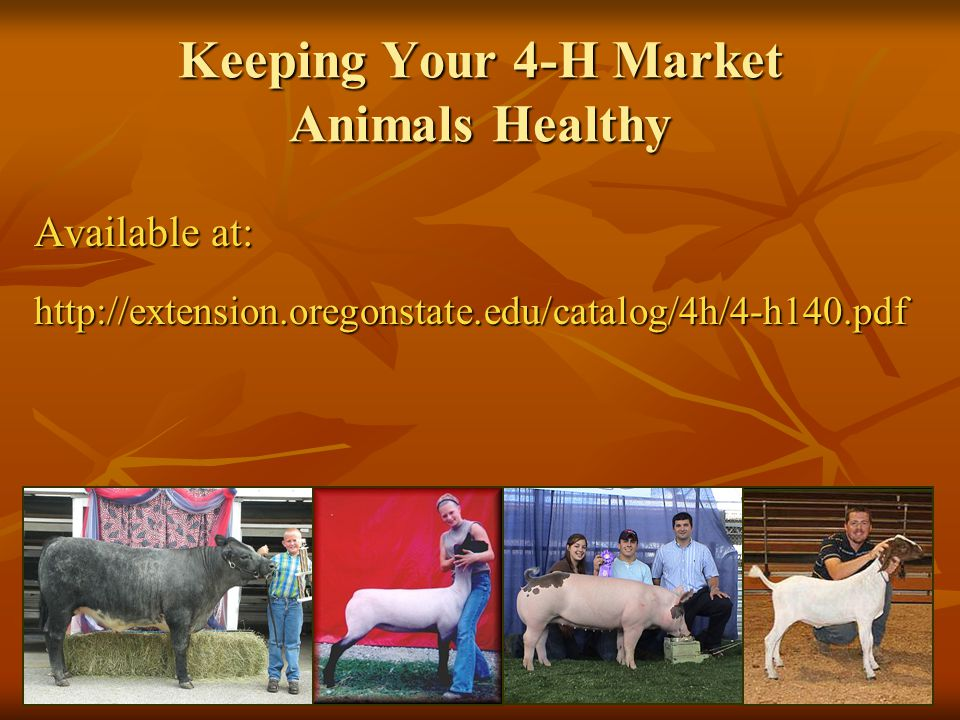 2-18-2008 Keeping Your 4-H Market Animals Healthy Available at: http://extension.oregonstate.edu/catalog/4h/4-h140.pdf
