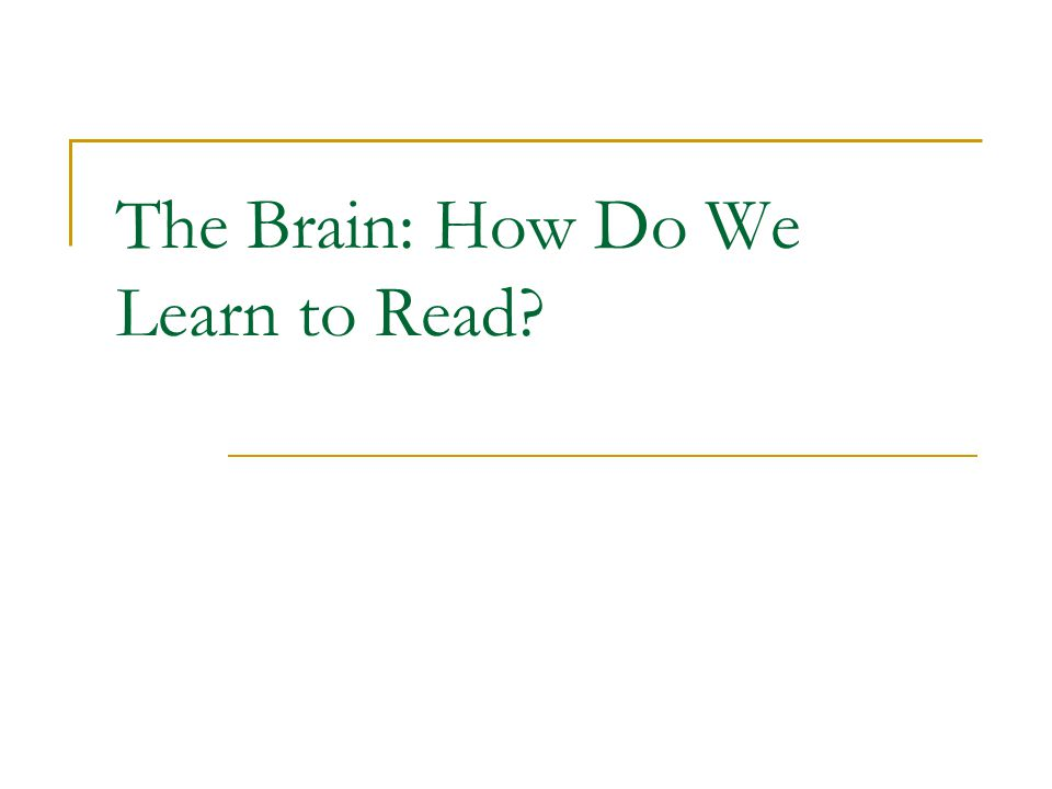 The Brain: How Do We Learn to Read?