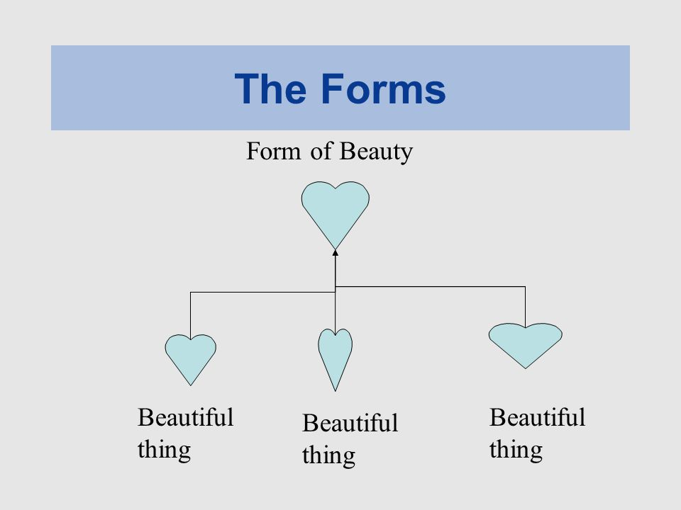 The Forms Beautiful thing Form of Beauty