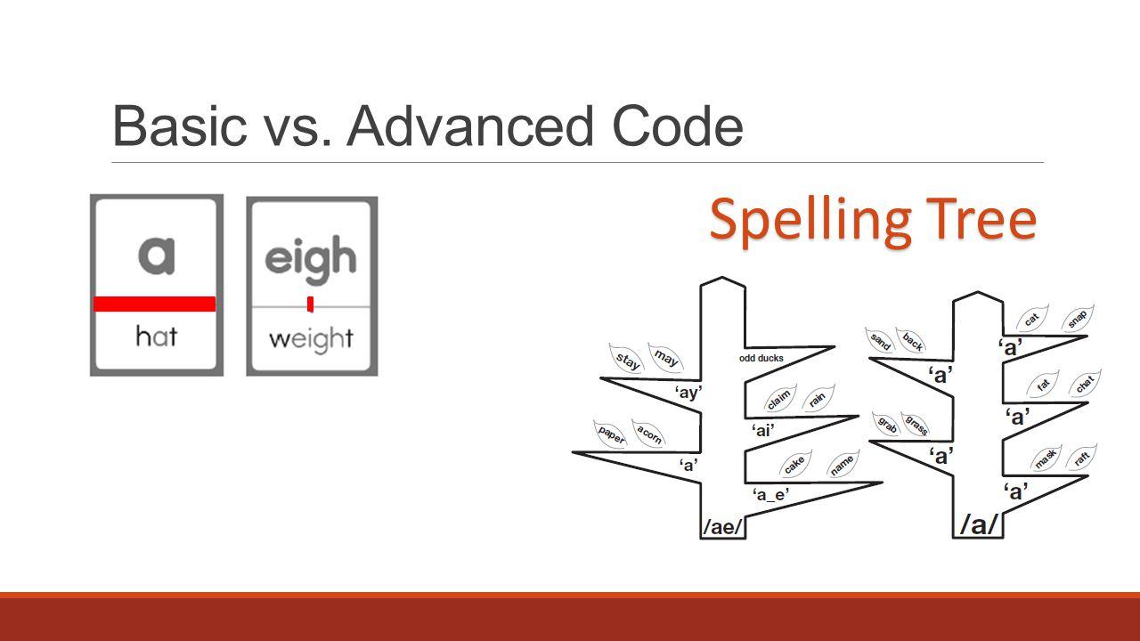 Basic vs. Advanced Code Spelling Tree
