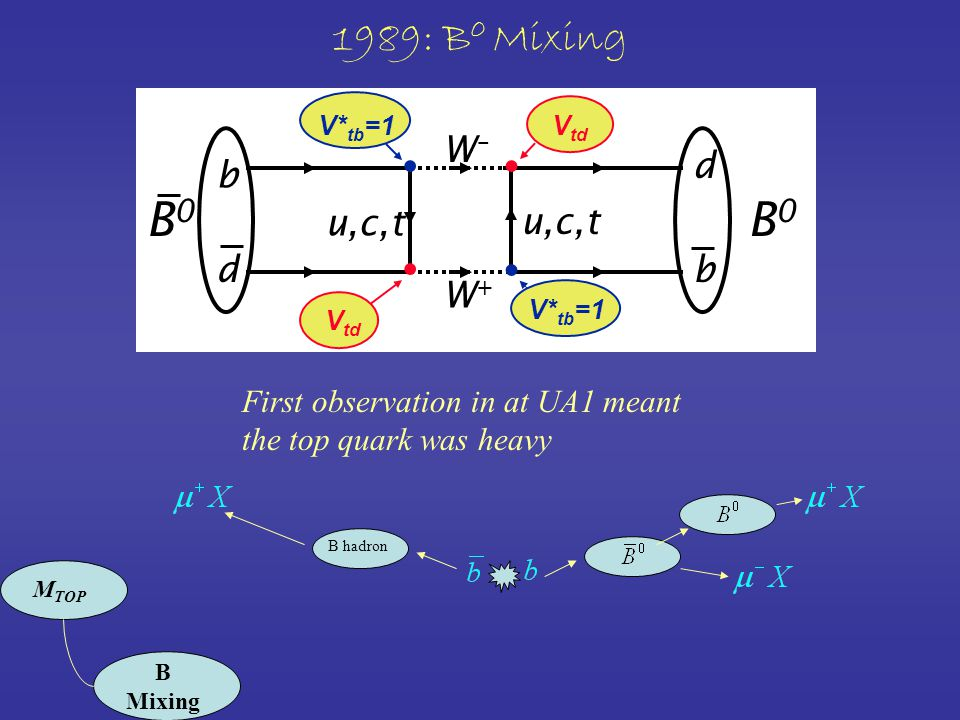 1989: B 0 Mixing b W–W– d bd W+W+ u,c,t B0B0 B0B0 V td V* tb =1 First observation in at UA1 meant the top quark was heavy B hadron M TOP B Mixing