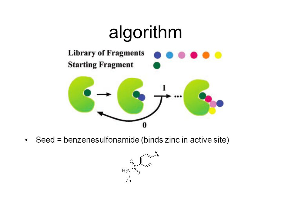 algorithm Seed = benzenesulfonamide (binds zinc in active site)