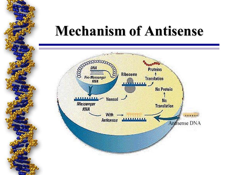 Antisense Technologies Antisense Oligonucleotides (Oligos) Catalytic Nucleic Acids: Ribozymes and Dnazymes Triplex Pnas and Other Nonstandard Nucleic Acids Aptamers Decoys Nucleic Acid Modifications Oligo-based Gene Regulation and Gene Therapy