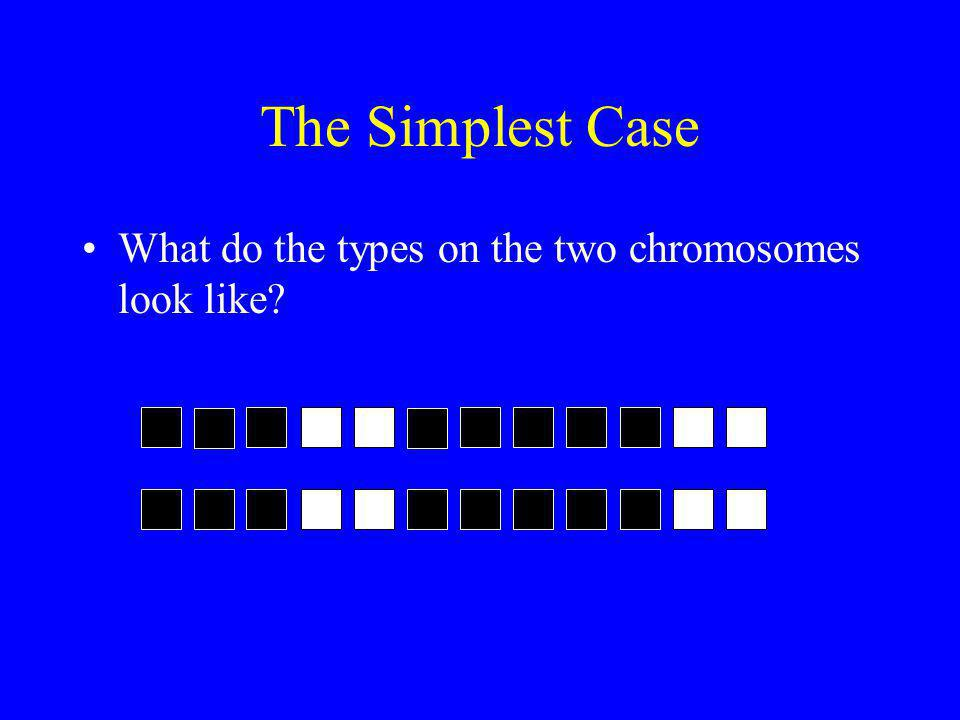 The Simplest Case What do the types on the two chromosomes look like