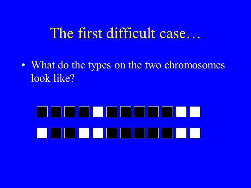 The first difficult case… What do the types on the two chromosomes look like