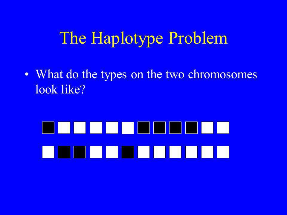 The Haplotype Problem What do the types on the two chromosomes look like